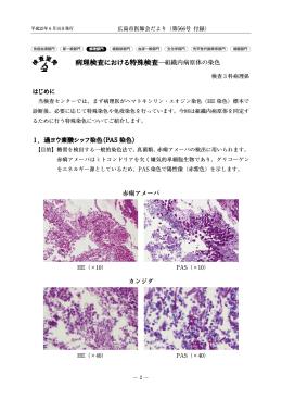 病理検査における特殊検査―組織内病原体の染色