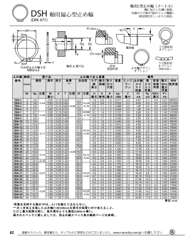 DSH 軸用偏心型止め輪