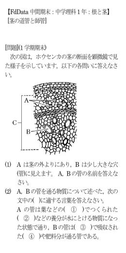 【FdData 中間期末:中学理科1 年:根と茎】 [茎の道管と師管] [問題](1