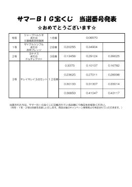 サマーBIG宝くじ 当選番号発表
