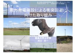風力発電施設による衝突回避に 向けた取り組み