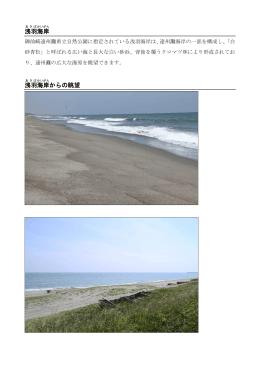 浅羽海岸(PDF:394.4KB)
