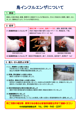 鳥インフルエンザについて(PDF:202KB)