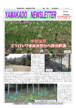 YAMAKADO NEWSLETTER NO.186 2015/05/21 (1) NO.186 2015