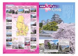 姫路城さくらの大回廊 表面