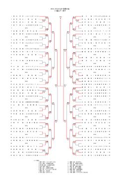 2012ジョージカップ ドロー、京都 (ThinkPadE520 上の問題の