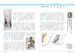 幹細胞医学分野 西村栄美 教授
