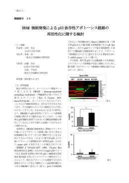 DRAM 強制発現による p53 依存性アポトーシス経路の 再活性化