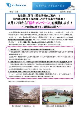 3月17日から「桜キャンペーン」を実施します!