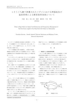 ーそう ごち網で漁獲されたマダイにおける神経抜及び 温度管理による魚