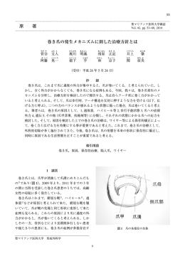 全文 - 聖マリアンナ医科大学雑誌