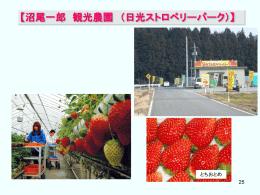 【沼尾一郎 観光農園 (日光ストロベリーパーク)】