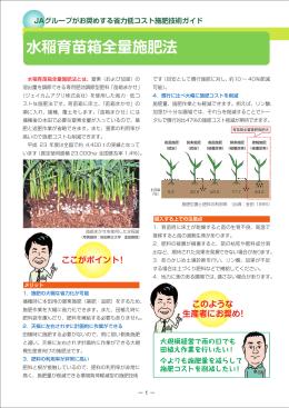 水稲育苗箱全量施肥法