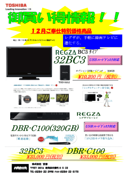 DBR-C100(320GB)
