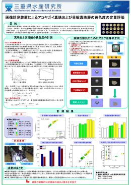 画像計測装置によるアコヤガイ真珠および貝殻真珠層の黄色度の定量評価