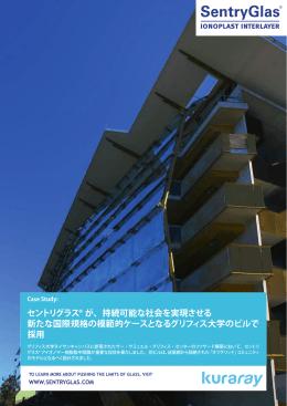 Endesa Case History(japanese).indd