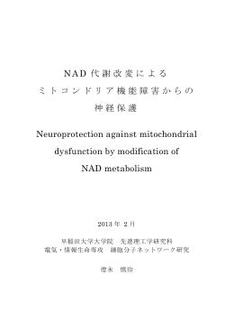 NAD 代謝改変による ミトコンドリア機能障害からの 神経保護