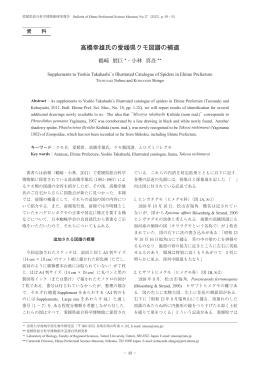 高橋幸雄氏の愛媛県クモ図譜の補遺