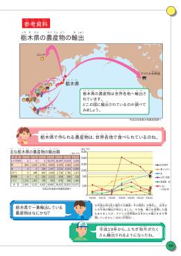 栃木県の農産物の輸出額