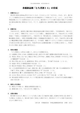 水稲新品種「とちぎ酒14」の育成
