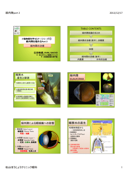 TABLE CONTENTS 緑内障 GLAUCOMA 眼房水の産生