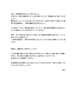 先日、伏見稲荷大社に行って参りました。 予定では、有名な鳥居をチラッ
