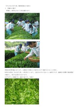 「手もみあさぎり茶」製茶授業 5 月 29 日 1 茶摘みの様子 茶葉は、新芽を