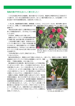 福島の桃生産者レポート(pdf