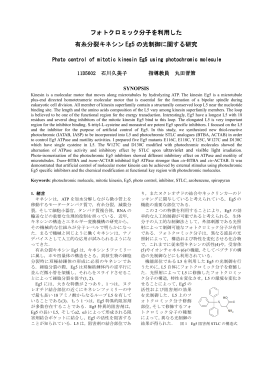 フォトクロミック分子を利用した 有糸分裂キネシン Eg5 の光制御に関する