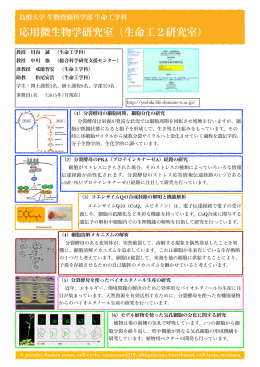 研究室紹介PDF - 島根大学応用微生物学研究室