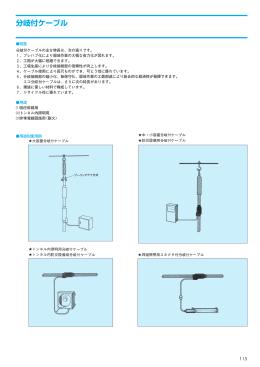 低圧幹線用分岐付ケーブル
