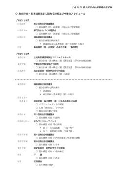 経緯及び今後の策定スケジュール [92KB pdfファイル]