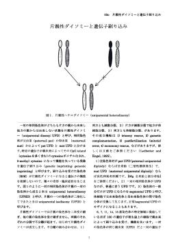片親性ダイソミーと遺伝子刷り込み 片親性ダイソミーと遺伝子刷り込み