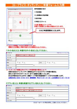 [ロープライス・ギャランティー]申請フォーム入力例