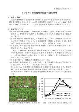 コシヒカリ疎植栽培の生育・収量の特徴(PDF:312KB)