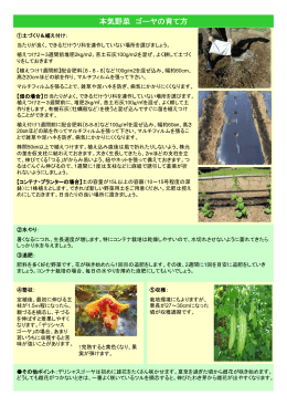 625KB PDF - SUNTORY FLOWERS For Business