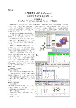 FE03 分子計算支援システム Winmostar 作者が語る分子計算の世界 ―