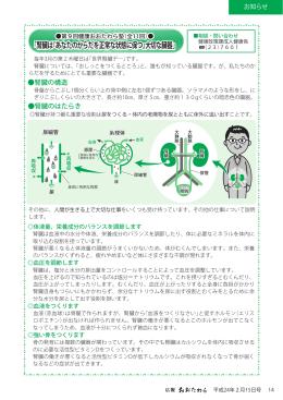 「腎臓は あなたのからだを正常な状態に保つ 大切な臓器」