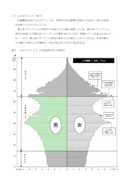 (7)人口ピラミッド(PDF:165KB)