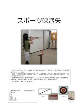スポーツ吹き矢(PDF:156KB)