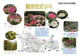 花の庭園 ヒラドツツジ キモッコウバラ ボタン園 観賞温室