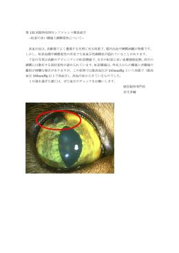 第 132 回眼科症例カンファレンス簡易紹介 ―虹彩の赤い腫瘤と網膜