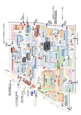 霞総合研究棟 臨床研究棟 研究棟 臨床第 2 霞体育館 自 然科学研究