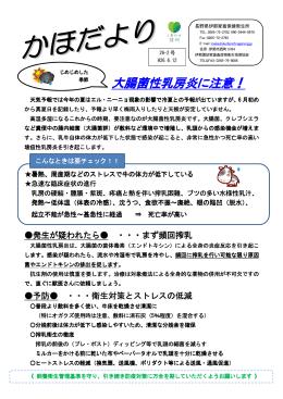 大腸菌性乳房炎に注意!