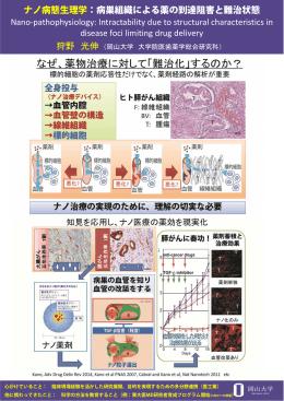 ナノ病態生理学:病巣組織による薬の到達阻害と難治状態 Nano