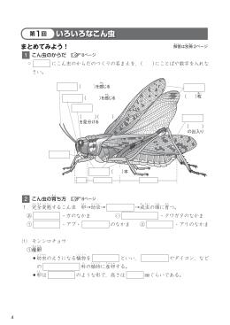 いろいろなこん虫