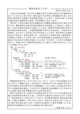 PDF:167KB