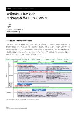 PDF全文表示 - ニッセイ基礎研究所