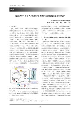 緑藻クラミドモナスにおける無機炭素濃縮機構と脂質代謝‡ 解説