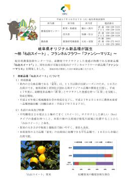 岐阜県オリジナル新品種が誕生 ~柿「ねおスイート」、フランネルフラワー